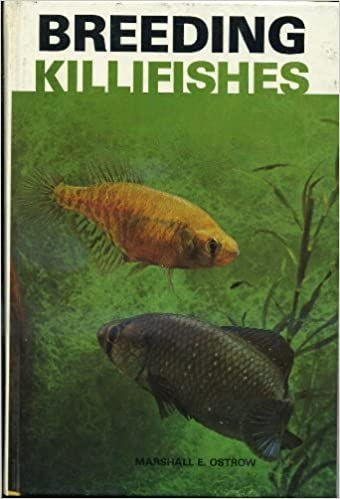 Breeding Killifishes