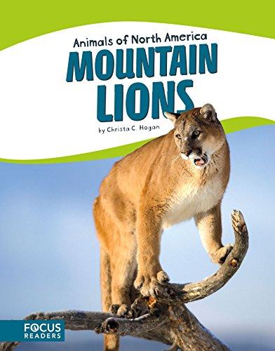 Mountain Lions (Animals of North America) (Focus Readers: Animals of North America: Beacon Level)