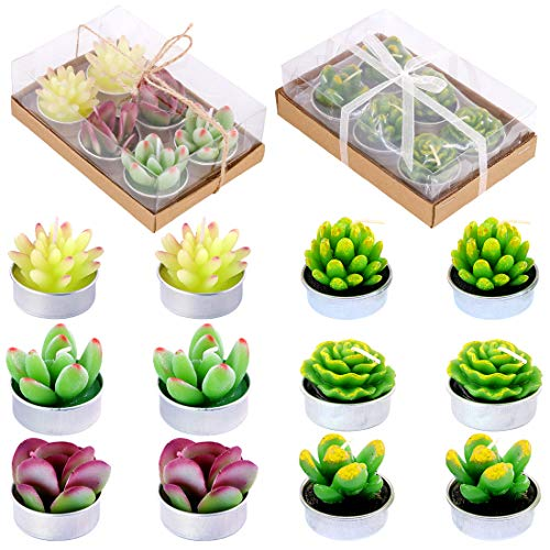 (Glarks 12Pcs Cute Handmade Delicate Artificial Succulents Tealight Candles Set Gift Packaged for Birthday Party Valentine's Day Wedding Spa Home Decor and DIY Gift)