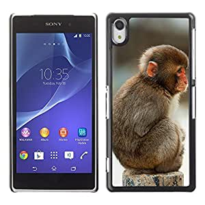 Graphic4You Cute Lilttle Monkey Sitting Animal Design Hard Case Cover for Sony Xperia Z2