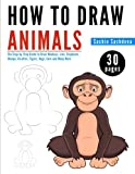 How to Draw Animals: The Step-by-Step Guide to Draw Monkeys, Lion, Elephants,  Sheeps, Giraffes, Tigers, Dogs, Cats and Many More