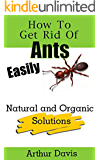How To Get Rid Of Ants Easily: Natural and Organic Solutions