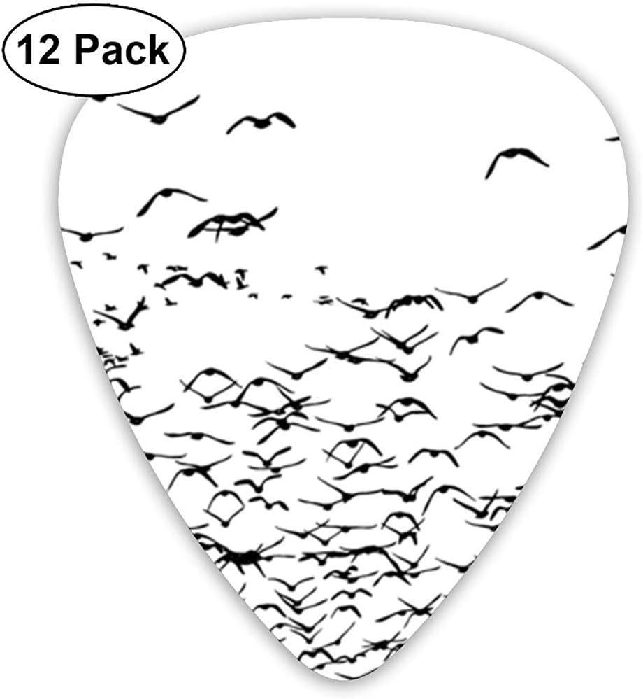 Púas de guitarra Birds Animals Flying Sampler Púas de guitarra - El paquete de 12 incluye medidores delgados, medianos y pesados