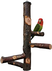 Dotlite Bird Perch Nature Wood Stand for Parrots, 12inch Height with 4PCS Branches Suitable for Small Medium Birds and Parrots