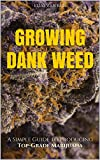 Marijuana: How to Grow Marijuana - A Simple Guide to GROWING DANK WEED: Indoor and Outdoor (Medical Marijuana, Cannabis, Marijuana Growing, Marijuana Grower's Bible)