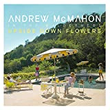 51ljtE6noPL. SL160  - Andrew McMahon in the Wilderness - Upside Down Flowers (Album Review)