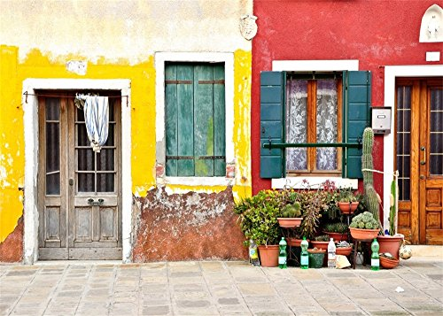 Laeacco 7x5ft Rustic Front Door View Vintage Closed Door Windows Old House Burano Island Italy Backdrop Photography Background Kids Adults Photo Studio Props