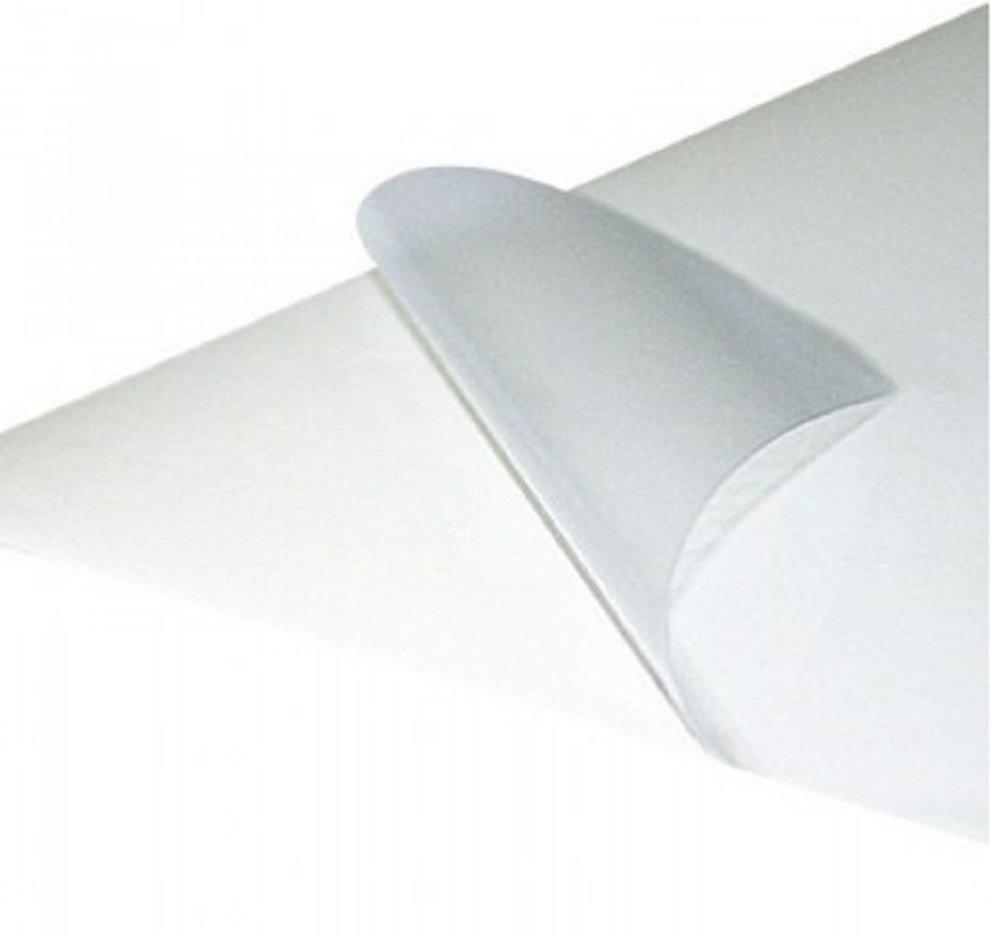 Carta adesiva trasparente - stampa laser 30 fogli A4 e-dama