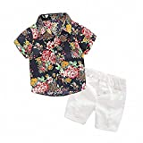 Hawaiian Outfits Toddler Boys Flower Button-Down Shirts and Shorts Clothes Set