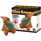 Chia Gnome