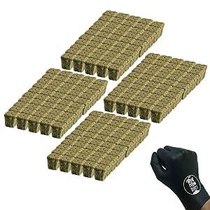 GRODAN A OK Rockwool Stonewool Hydroponic Grow Media Starter Cubes Plugs – 1″ x 1″ – 2 Sheets of 100 (200 Plugs Total)