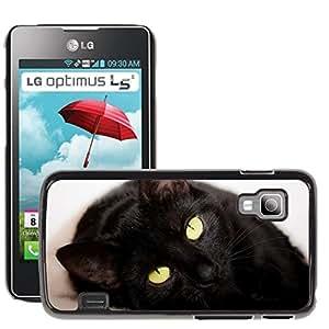 Super Stella Slim PC Hard Case Cover Skin Armor Shell Protection // M00145002 Cat Lying Black Eyes Domestic // LG Optimus L5 II Dual E455 / E460