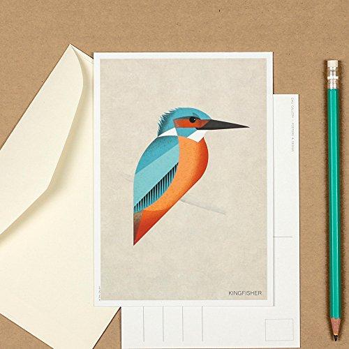 Art postcard, housewarming picture, Kingfisher, bird decor, minimalist art print, Scandinavian style, collectible postcard, retro wall decor Postcards Framed Art Wall Decor