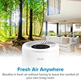 LEVOIT Air Purifiers for Home Allergies and Pets