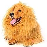 Lion Mane for Dog, Dogloveit Dog Costume with Gift [Lion Tail] Lion Wig for Dog