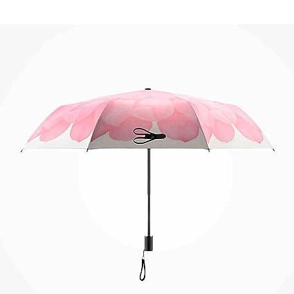 Paraguas - Marco reforzado resistente al viento Sunny paraguas paraguas paraguas paraguas paraguas paraguas paraguas paraguas