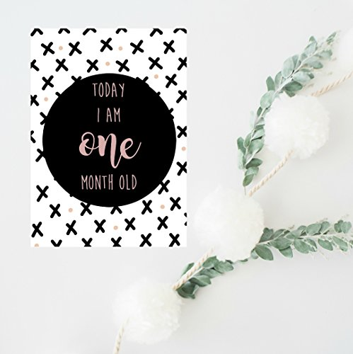 Baby-Milestone-Cards-Gift-for-Newborn-Gift-for-New-Mom-Girl-Baby-Shower-Gift-Baby-Age-and-Moments-Milestones