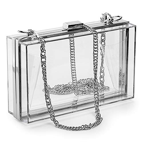 Women Acrylic Clear Purse Cute Transparent Crossbody Bag Lucite See Through Handbags Evening Clutch Events Stadium Approved,silver frame clear