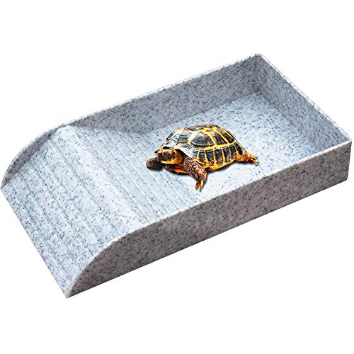 - WINGOFFLY Large Reptile Feeding Dish with Ramp and Basking Platform Plastic Turtle Food and Water Bowl Also Fit for Bath Aquarium Habitat for Lizards Amphibians