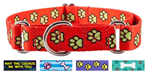 Country Brook Design Red Busy Paws Martingale Dog Collar-L