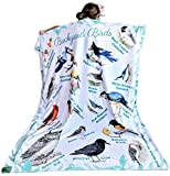 birdyboutique.com Birds Butterflies Common Backyard Species Pictures Names Identification Soft Warm Learning Blanket for Kids Large 50x60 Educational Gift Double Layered