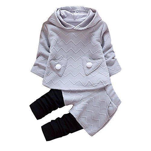 Toddler Baby Girl Long Sleeve Hooded Warm Tops+Patchwork Pants Set (3T, Gray)