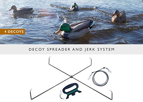 Swimming Duck Decoy - 8