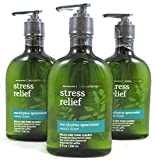 Lot of 3 Bath & Body Works Aromatherapy Stress Relief Eucalyptus Spearmint Hand Soap (Eucalyptus Spearmint)