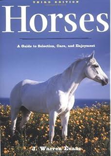 CHESTNUT PAINT  HORSE HEAD RUBBER TRAILER BALL COVER
