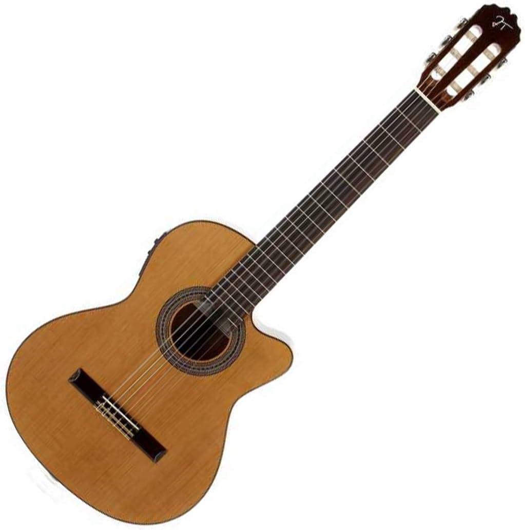 Guitarra clásica con Previo Jose Torres Jtc-15Ce