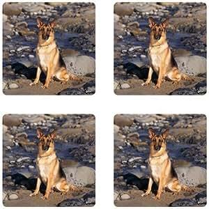 German shepherd dog Rubber Square Coaster set (4 pack) Great Gift Idea