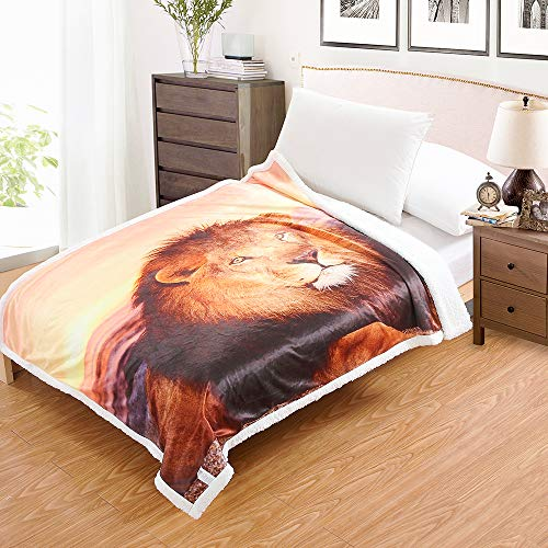 i-baby Adult Sherpa Throw Blanket Digital Printing Reversible Super Soft Lightweight Blanket Warm Microfiber All Season Blanket for Bed or Couch (50