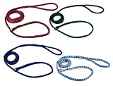 Kennel Dog Lead Bulk Packs for Dogs Heavy Poly Control Slip Style Rescue Shelter(72 Leads)