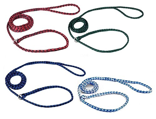 Kennel Dog Lead Bulk Packs for Dogs Heavy Poly Control Slip Style Rescue Shelter(72 Leads) by Guardian