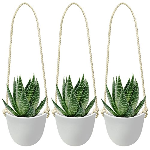 Nellam Ceramic Hanging Planters - Modern White Porcelain Containers - 3 pcs Decorative Pots for Indoor & Outdoor Use - Wall Decor Vase for Garden Flowers, Herbs, Plants and Succulents