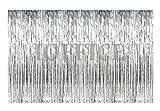 IOFFICE 12' X 8' (144'' X 96'') Metallic Silver Foil Fringe Curtains Door Window Curtain Party Decoration (12' x 8', Silver)