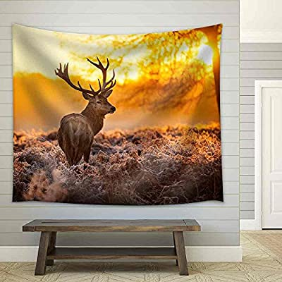 Unbelievable Handicraft, Red Deer in Morning Sun Fabric Wall, Premium Product