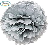 10pcs Silver Tissue Hanging Paper Pom-poms, Hmxpls Flower Ball Wedding Party Outdoor Decoration Premium Tissue Paper Pom Pom Flowers Craft Kit