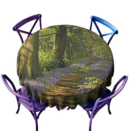 Beihai1Sun Washable Round Tablecloth,Woodland A Carpet of Bluebells Spreads Through Woodland in Staffordshire England,Stain Resistant, Washable,47 INCH Green Purple Brown