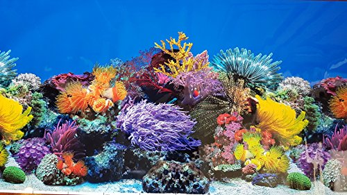 New!! 23 Inch Height Aquarium Background Coral And Freshwater Plants Jungle Decorations (48''(L) x 23''(H))
