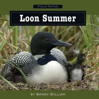 LOON SUMMER by Gillum, Sandy ( Author ) on Mar-01-2008[ Hardcover ] pdf epub