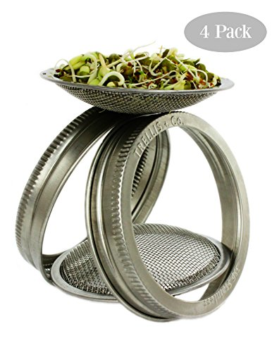 seed sprouter jar - 5