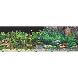 Blue Ribbon Pet Products ABLVSB1324 Tropical Decorative Background for Aquarium, 24-Inch by 50-Feet