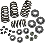 S&S Cycle Sidewinder Valve Spring Kit 900-0050