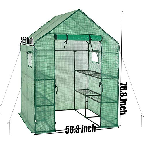 Portable Gardening Steeple Green House with PE Cover, 3 Tier 12 Shelf Waterproof Walk in Plant Green House,56'' L x 56'' W x 77'' H by SCYL (Image #4)