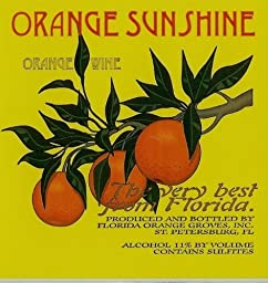 NV Florida Orange Groves Orange Sunshine SWEET Valencia Orange Fruit Wine 750 mL
