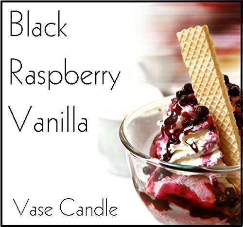 3 Black Raspberry Vanilla Candles and 1 Clear Satin Vase - Scented, Soy, Paraffin Wax Blend, Paper Core, Self-trimming Wick Candle and Refillable Vase, 150 Hour Burn Time, (Black Wire Vase)