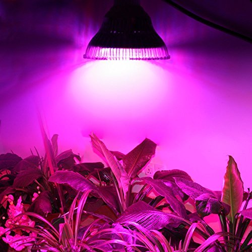 Plant Light,Haichen Full Spectrum LED Grow Light 8W 5730SMD 18LEDs 11 Red/3 Blue/1 IR/1 UV/1 White/1Yellow for Greenhouse Flowering Plant and Hydroponics System Growing Box (1)