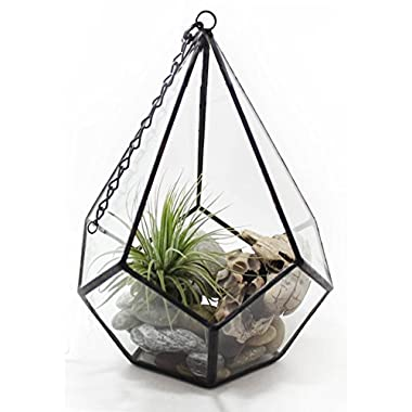 High Quality Glass Terrarium Succulent Planter and Candle Holder, Geometric Teardrop Shape, Iron Frame, 7  X 9