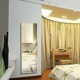 DECORAPORT Wall-mounted Full Length Wall Mirror Dressing Mirror 18 In x 57 In (B-D002)